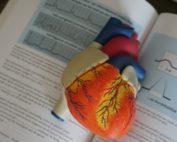 como-actuar-ante-una-parada-cardiorrespiratoria
